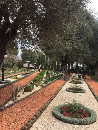 Bahai Gardens  and Shrine: photo5.jpg