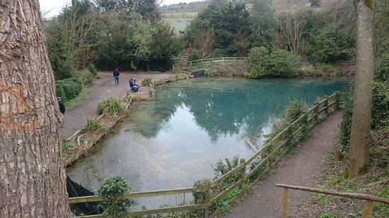 Albury, UK: Silent Pool Distillery