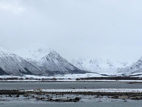 Stokmarknes, Norway: photo4.jpg