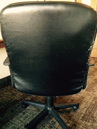 Staybridge Suites Columbus Ft. Benning: chair in room