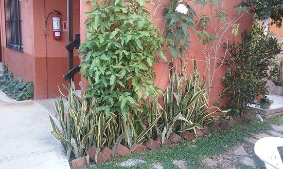 Hotel Villa Matisse: 20170312_085742_large.jpg