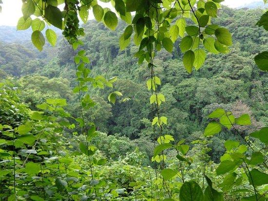 Montibelli Private National Reserve