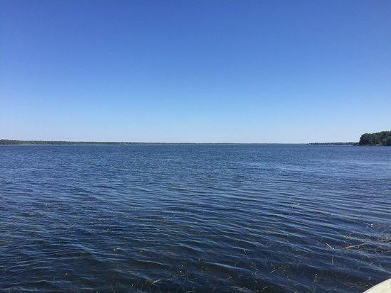 Foto de Lake Panasoffkee