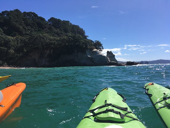 Cathedral Cove Kayak Tours: photo1.jpg