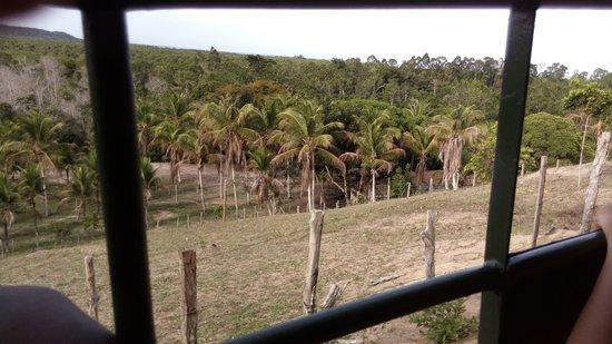 Санта-Крус-Кабралия: Vista parcial da Fazenda