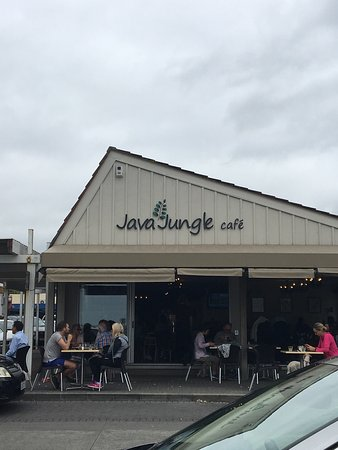Java Jungle Cafe