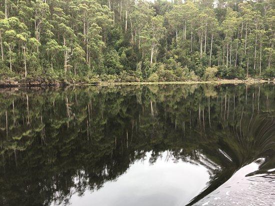 Corinna, Australia: Pieman River reflections
