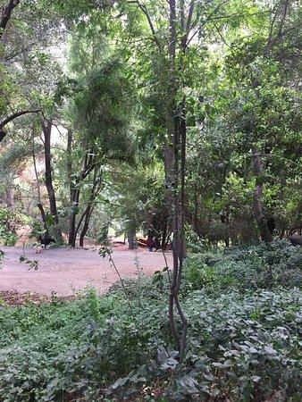 Cascada de las Animas: photo3.jpg