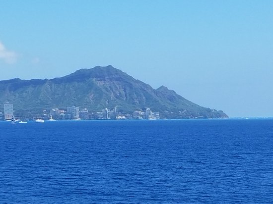 Star of Honolulu - Dinner and Whale Watch Cruises: Great lunch, views and whale sightings