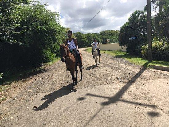 Island Riders : photo1.jpg