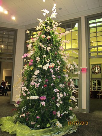 "Belmont, NC: During the holiday season, a beautiful ""tree"" greets you - a mixture of ferns and orchids."