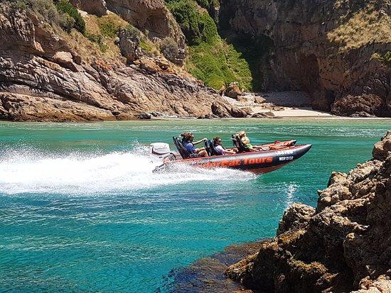 Phillip Island Thundercat Tours