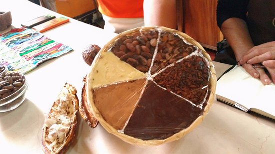 ChocoMuseo: from bean to chcolate
