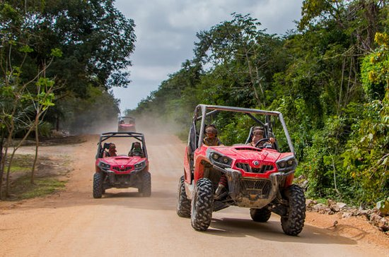 Jungle Buggy Tour from Playa del...