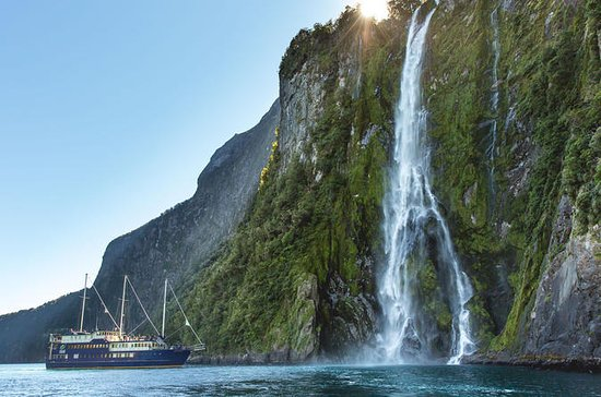 Milford Sound Nature Cruise fra...