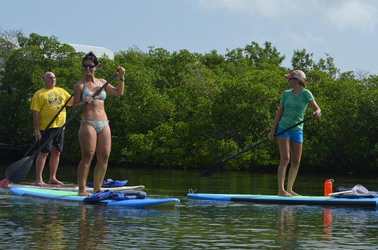 Key West Stand Up Paddleboard Rental...