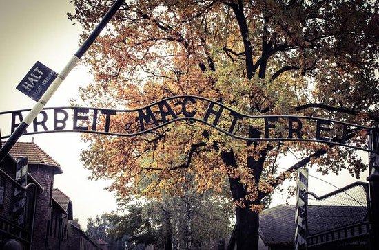 Full-Day Auschwitz and Wieliczka Salt...