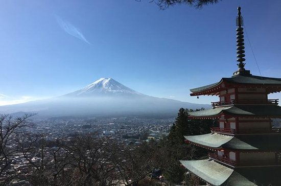 Private Tagestour: Fuji Highlights ...