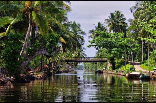 Tour Privado: Atracciones de Negombo...