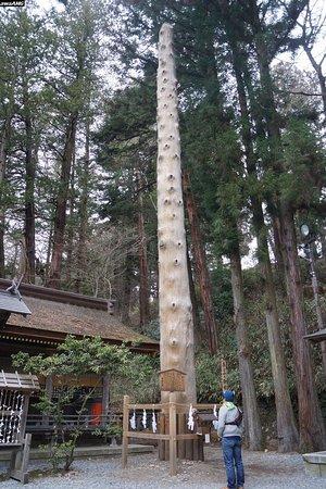 Suwa, Japón: 諏訪大社下社春宮 御柱