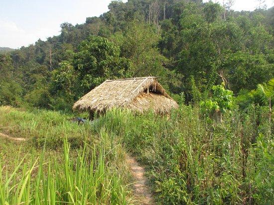 Luang Namtha, Laos: to Nalan Neua village