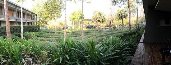 Hang Dong, Thailand: photo8.jpg