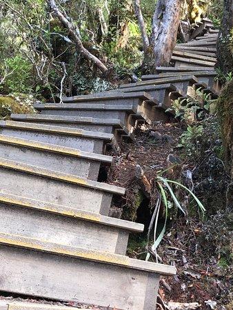 Westport, Nuova Zelanda: The Old Ghost Road