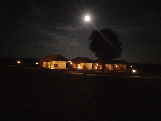 Thar Oasis Resort & Camp: Thar Oasis Camp. Lovely place
