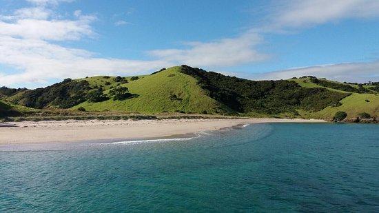 Paihia, نيوزيلندا: photo1.jpg