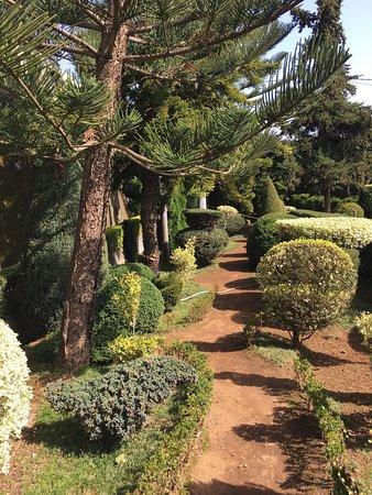 Madeira Botanical Garden : photo3.jpg