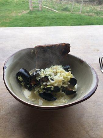 Axminster, UK: Mussels