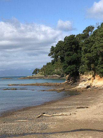 Kawakawa Bay: View to right of Waiti Bay