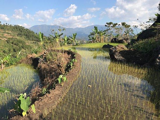 Bontoc, Philippines : photo7.jpg
