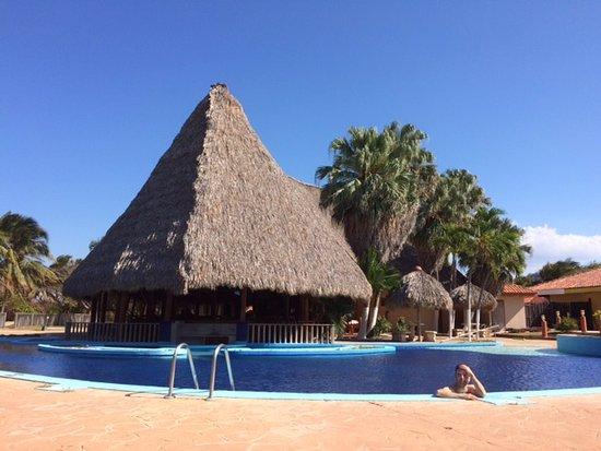 Costa Kite : ecoplaya next to the kite beach