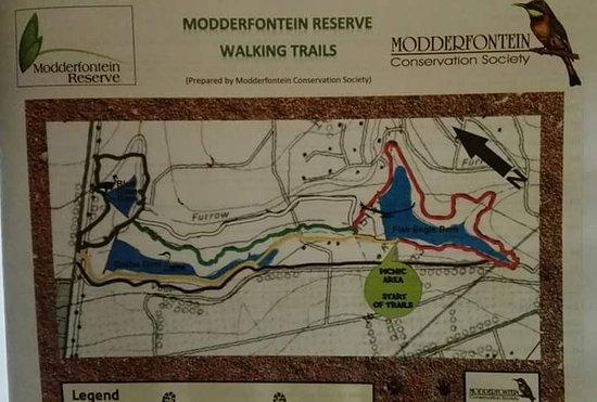 Modderfontein
