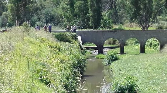 Modderfontein, South Africa: FB_IMG_1490087711205_large.jpg