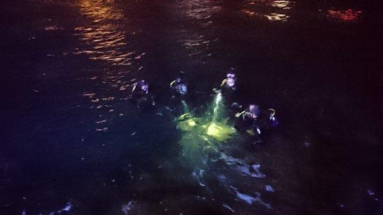 Bugibba, Malta: Buddies Dive Cove