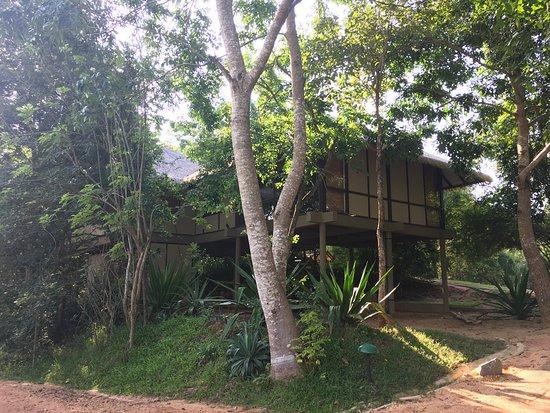 Thirappane, ศรีลังกา: photo2.jpg