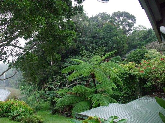 Cairns District-bild
