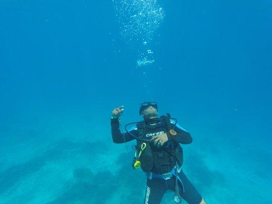 Gili Air, إندونيسيا: Dream Divers Gili Air