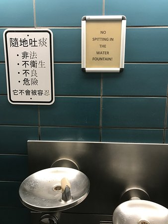 ‪‪Flushing‬, نيويورك: No spitting in the water fountain‬