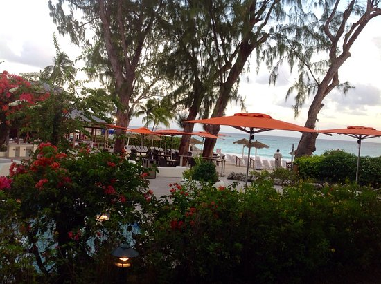 Bougainvillea Beach Resort: View from room