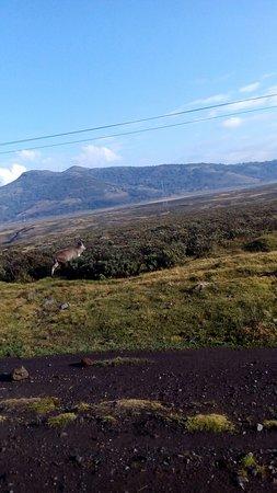Dire Dawa, Ethiopia: Alliance ethio-francaise de Dire Daoua