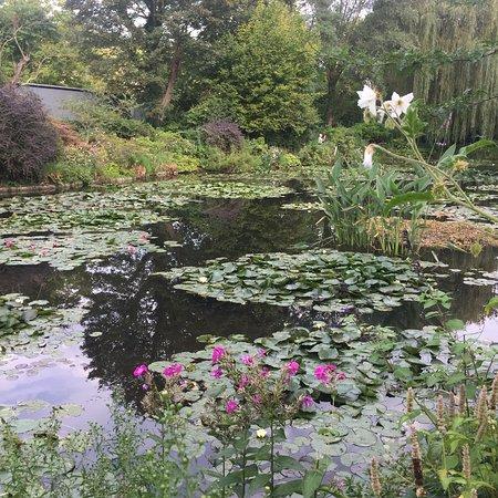 Το Σπίτι και οι Κήποι του Κλωντ Μονέ: photo4.jpg