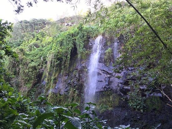 Sainte-Rose, Ile de La Réunion : photo1.jpg