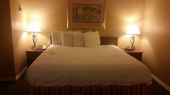 Foto de Comfort Suites Sarasota