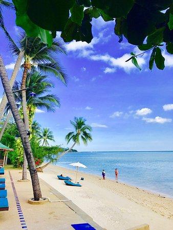 وييك إندر فيلا بيتش ريزورت: Mon coup de cœur sur Koh Samui  BLU' BEACH .... Un endroit paisible , dans une ambiance décontra