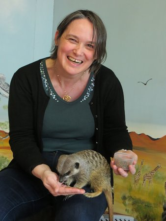 Stretham, UK: the meerkats are so cute !!