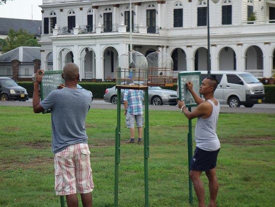Presidential Palace: zondag ochtend vogeltjes fluit competitie