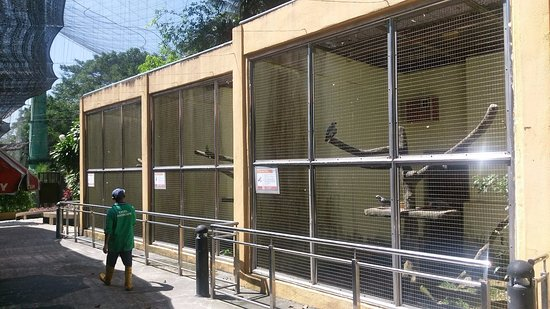 Kuala Lumpur Bird Park: Concrete cages with not a single living branch inside